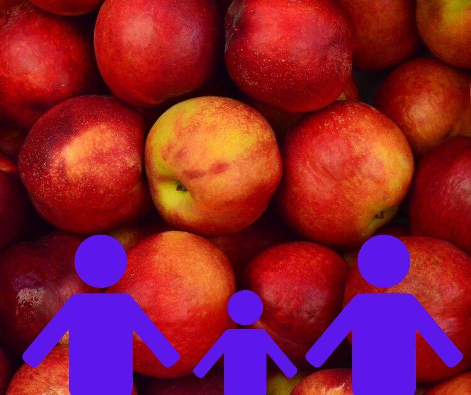 Fruitbox 3 personen